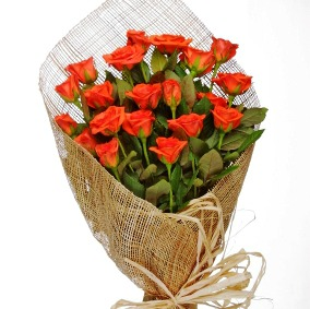 organic wrapped roses