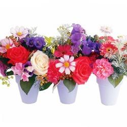 mini pot of flowers