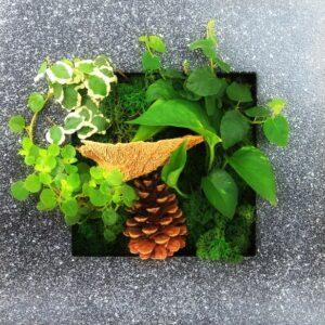 indoor forest garden for wall
